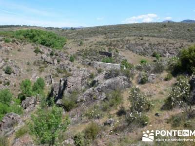 Senda Genaro - GR300 - Embalse de El Atazar - Embalse de Puentes Viejas - Presa de El Villar